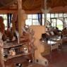 El bar, al igual que el resto de las instalaciones del Amboseli Sopa están a gran altura