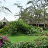 Lake Nukuru Lodge se encuentra envuelto por un maravillo jardín tropical