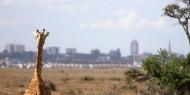 La ciudad vista desde el Parque Nacional de Nairobi