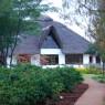 Plantación de café en el Ngorongoro Farm House, Karatu