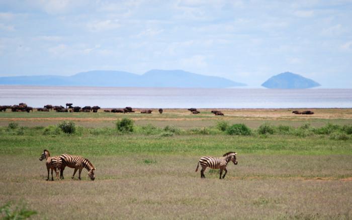 Lago Manyara