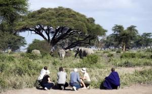 Los safaris a pie son una de las características de esta fabulosa concesión. Sinya, Tanzania
