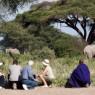 En Kambi Ya Tembo se pueden realizar safaris a pie entre otras diferentes actividades