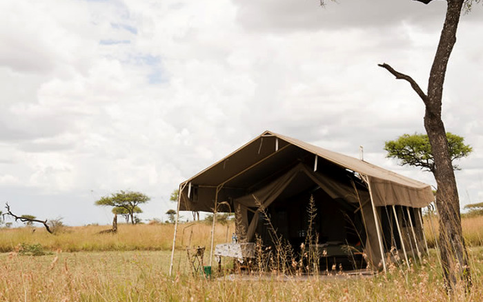 Serengeti Kati Kati
