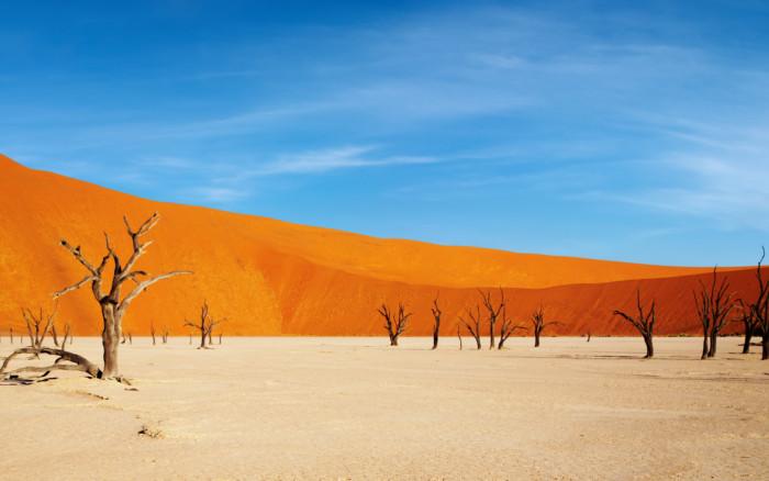 Desierto de Namibia