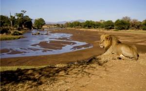 El río es fuente de vida y en Samburu todos lo saben