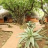Shakaland Hotel & Zulu cultutal village